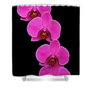 Pretty In Hot Pink Shower Curtain