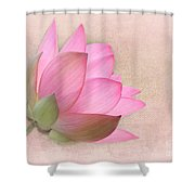 Pretty In Pink Lotus Blossom Shower Curtain by Sabrina L Ryan