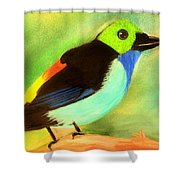 Pretty Paradise Tanager Shower Curtain