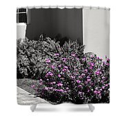 Pretty Pink Flowers Shower Curtain