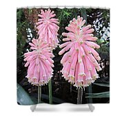 Pretty Pink Forest Lily Shower Curtain