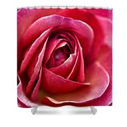 Pretty Pink Muted Shower Curtain