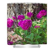Pretty Pink Petals Shower Curtain
