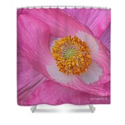 Pretty Pink Poppy Macro Square Shower Curtain