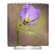 Pretty Purple Flower Shower Curtain