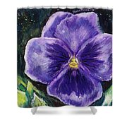 Pretty Purple Pansy Person Shower Curtain