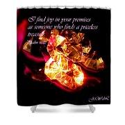 Priceless Treasure Shower Curtain