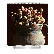 Prickly Padres Shower Curtain