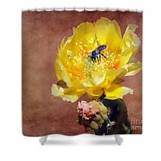 Prickly Pear And Bee Shower Curtain