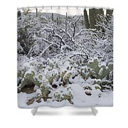 Prickly Pear And Saguaro Cacti Shower Curtain