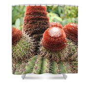 Prickly Situation Shower Curtain