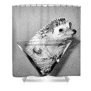 Prickly Toasting Shower Curtain