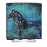 Pride Of Friesians Shower Curtain