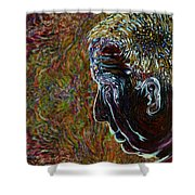 Priest Of Solace Shower Curtain