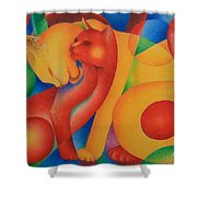 Primary Cats Shower Curtain