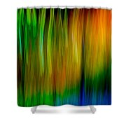 Primary Rainbow Shower Curtain