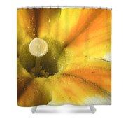 Primrose Closeup Shower Curtain