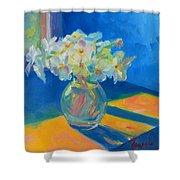 Primroses In Spring Light - Still Life Shower Curtain by Patricia Awapara