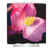 Bright Flower In Your Life Shower Curtain
