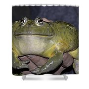 Prince Frog Hands Shower Curtain