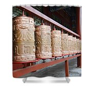 Prince Gong's Mansion 8621 Shower Curtain