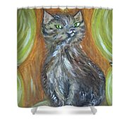 Princess Kitty Shower Curtain
