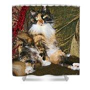 Princess Miss Gizzie By Diana Sainz Shower Curtain
