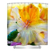 Prisms Of Nature - Meditation - Rhododendron  Shower Curtain