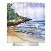 Pristine Mahaulepu Beach Shower Curtain