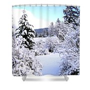 Pristine Winter Trail Shower Curtain
