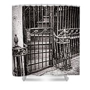 Private Stairway  Shower Curtain