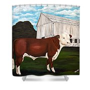 Prize Bull Shower Curtain