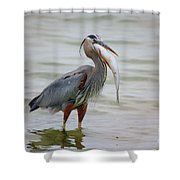 Prize Catch Shower Curtain