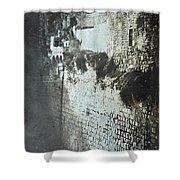 Probatic Pool, Jerusalem, 1844 Shower Curtain