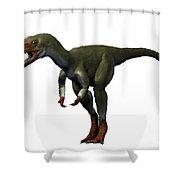 Proceratosaurus Dinosaur Shower Curtain