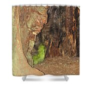 Profile Face In Tree Shower Curtain