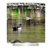 Profiled Duck Shower Curtain