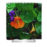 Prolonging Summer Shower Curtain
