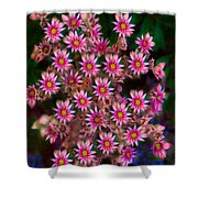 Promising Pink Petals Abstract Garden Art By Omaste Witkowski Shower Curtain