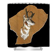 Pronghorn  Pictograph Shower Curtain