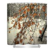 Prospect Park Winter Scene Shower Curtain