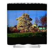 Prospect Park In Brooklyn II Shower Curtain