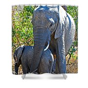 Protective Mother Elephant In Kruger National Park-south Africa Shower Curtain