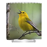 Prothonotary Wabler Shower Curtain