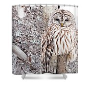Proud Shower Curtain