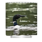 Proud Loon Shower Curtain