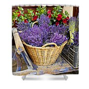 Provence Lavender Shower Curtain