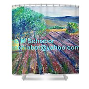 Provence Lavender Field Shower Curtain