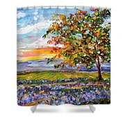 Provence Lavender Fields Shower Curtain