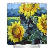 Provence Sunflower Trio Shower Curtain
